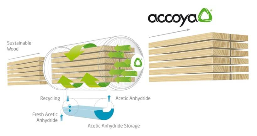 Accoya sustainable wood diagram