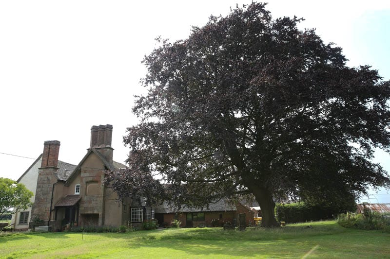 A wide shot of the rear of colliers oak farm showing the farmhouse and garden
