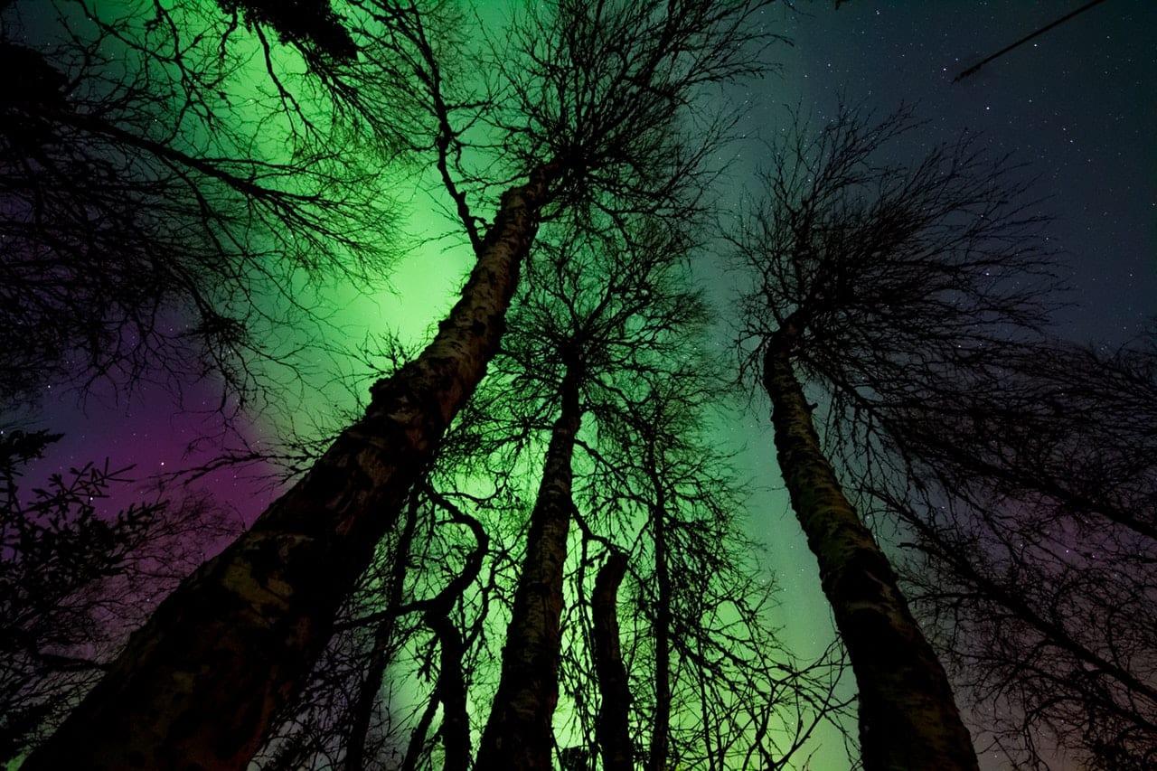 aurora-borealis-902756